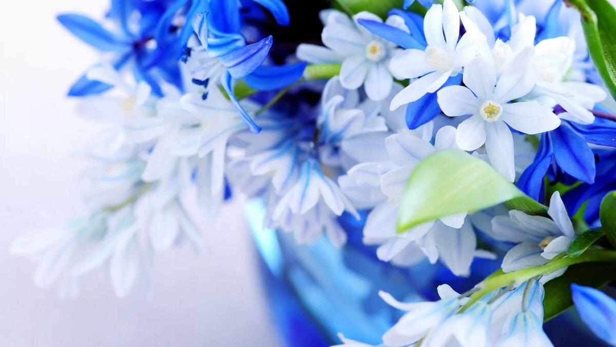 Открытка с голубым фоном, днем рождения