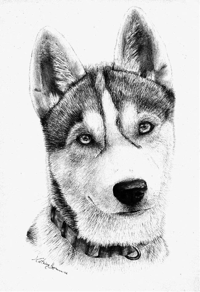 ней делать картинки как рисунки черно-белые продемонстрируем