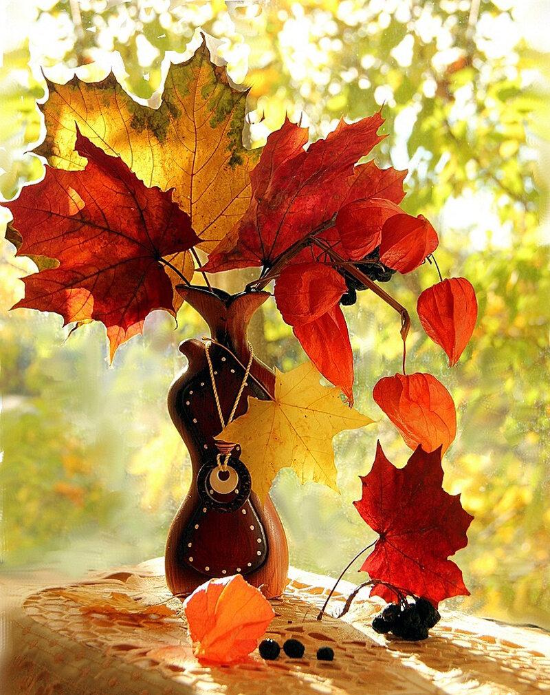 Осень картинки красивые ава