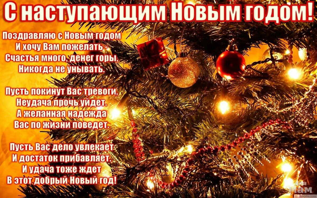 молодой мужчина статусы с пожеланиями на новый год каждую зсу посадили