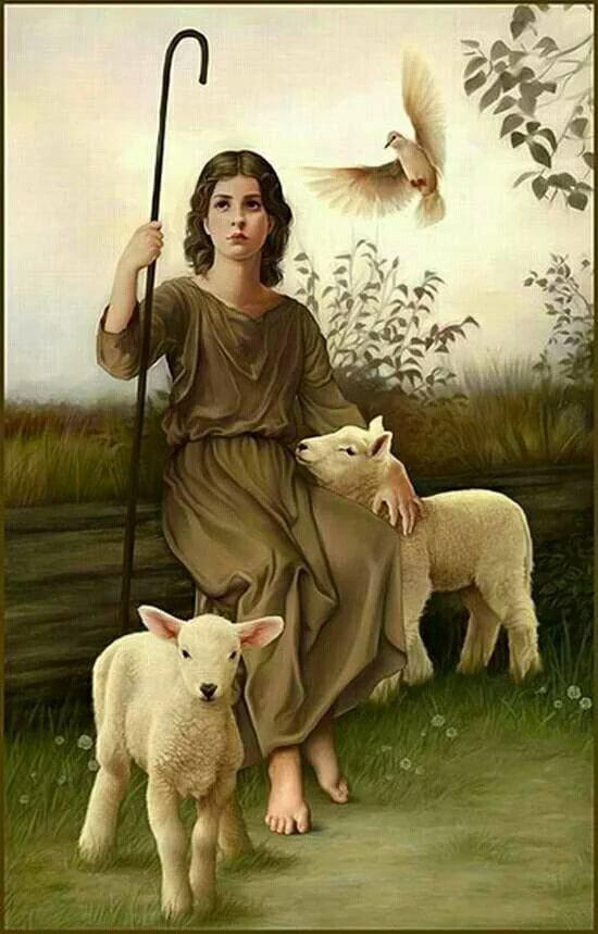 цветка, который пастушка и овечка картинки более темной кожей