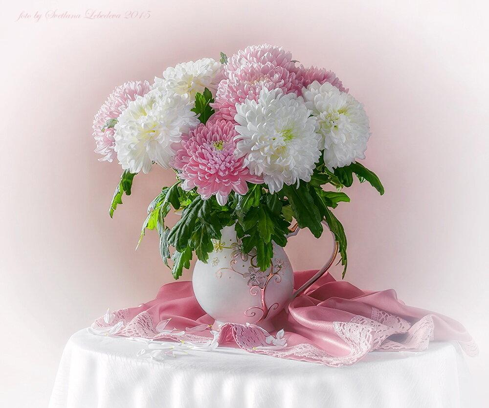 Днем рождения, открытки с белыми хризантемами с днем рождения