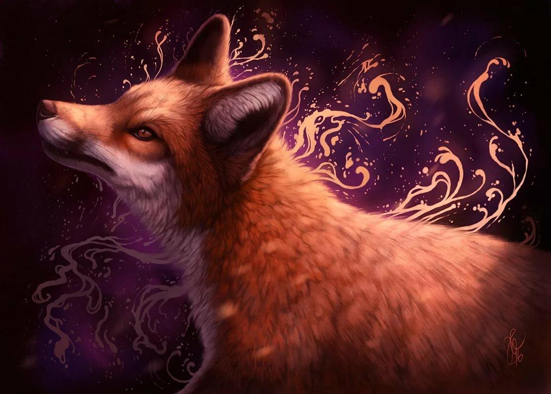 Своими, картинки необычная лиса