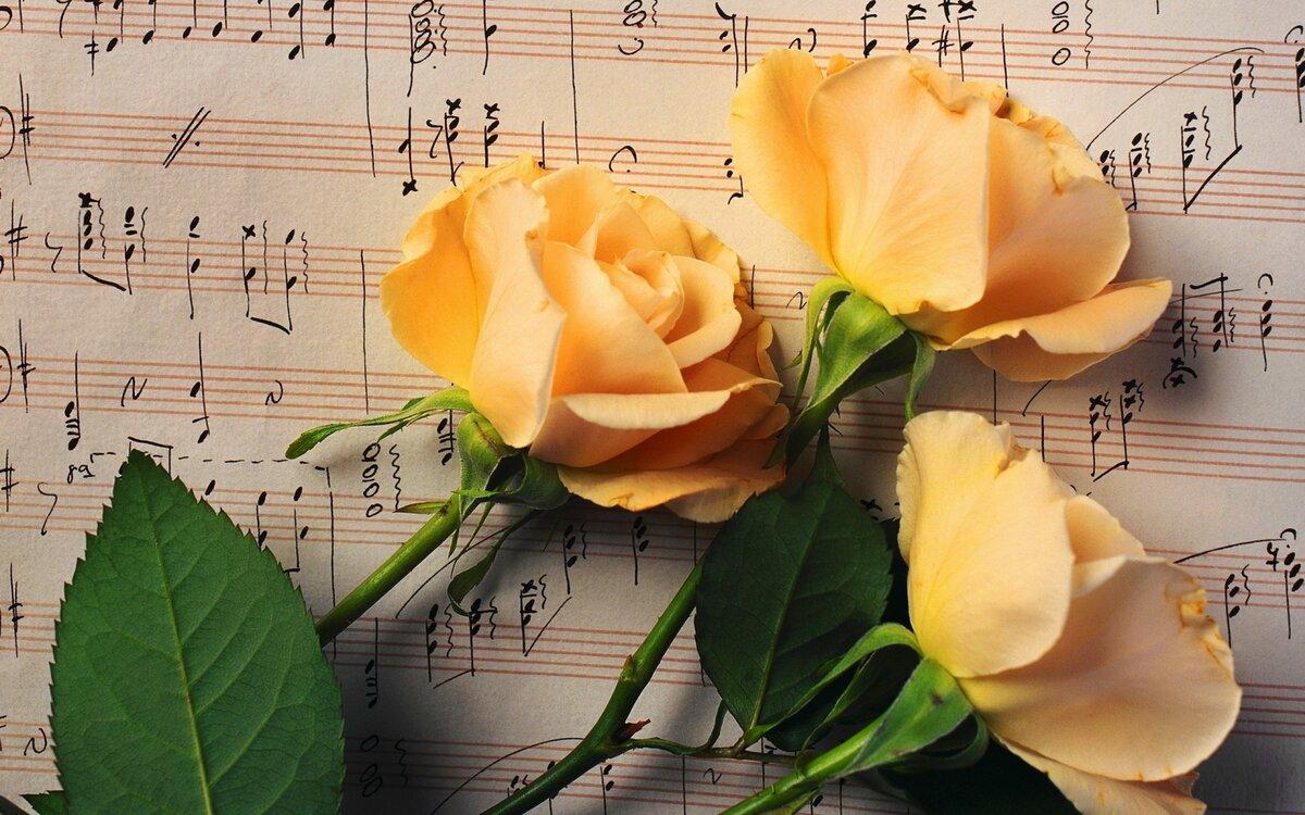 Музыкальные розы открытки, картинки телефон прикольные