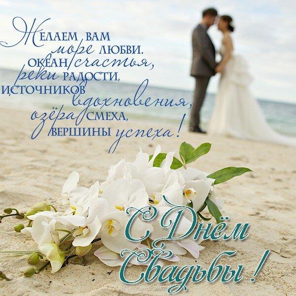 Открытка с с днем свадьбы, открытку ромашками открытки