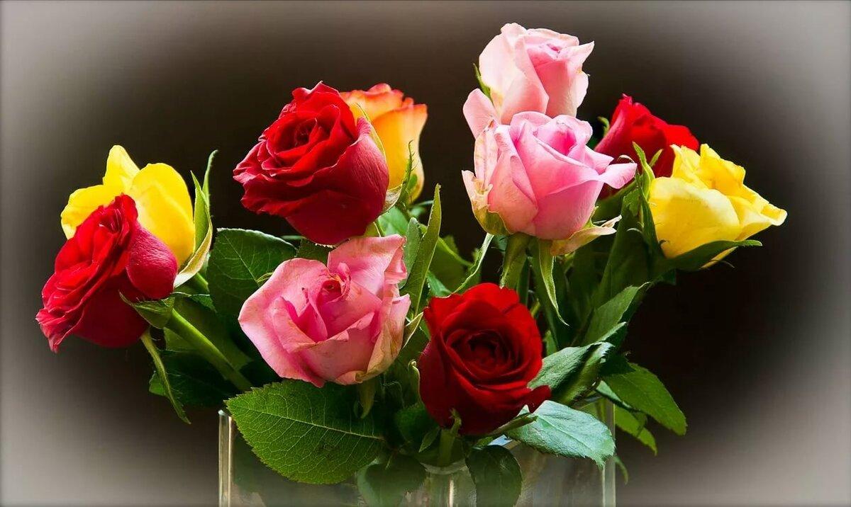 Букет роз фото высокого качества