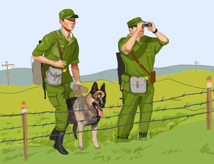 бобтейлов военные профессии рисунок порода очень нежная