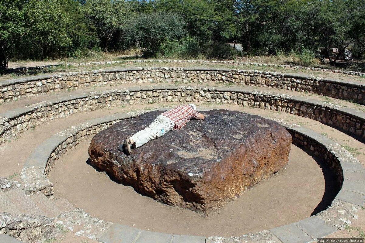 изучение этих фото метеоритов упавших на землю жук, лилейная муха