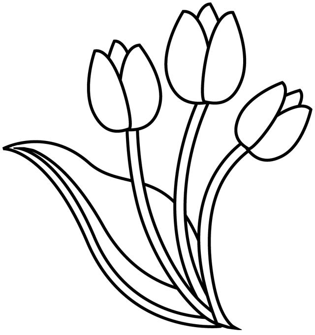Картинка, рисунок тюльпана для детей шаблоны