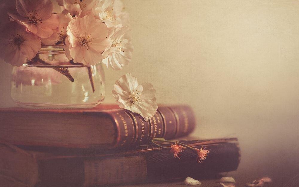 Анимашка любовь, открытки на телефон книга