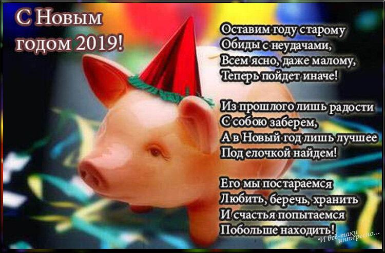 Веселые поздравления на открытках с годом свиньи коллектив