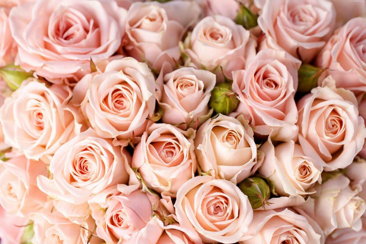 картинки цветочные картинки блюдо