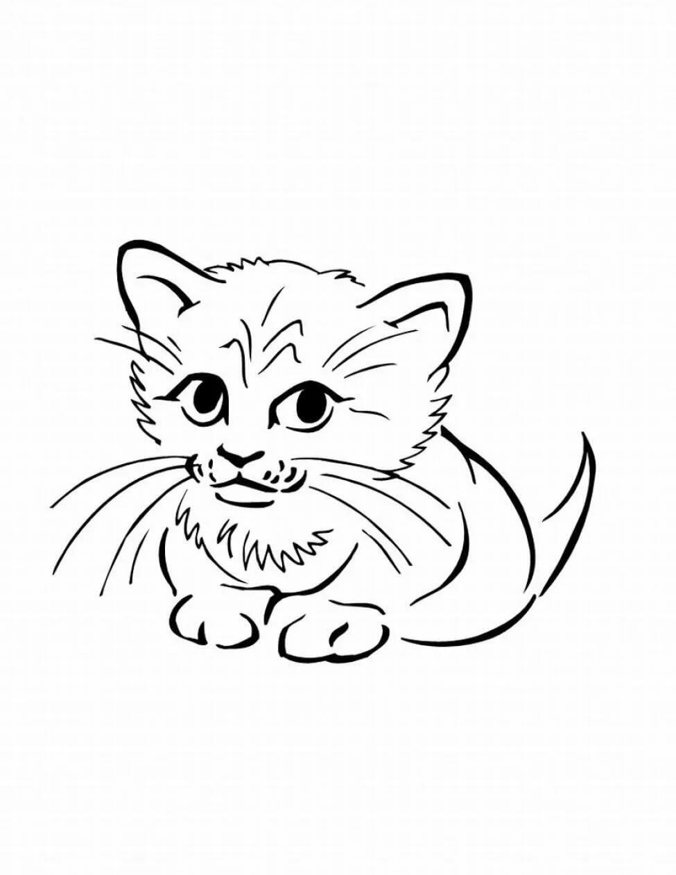 рисунок про котенка маленький