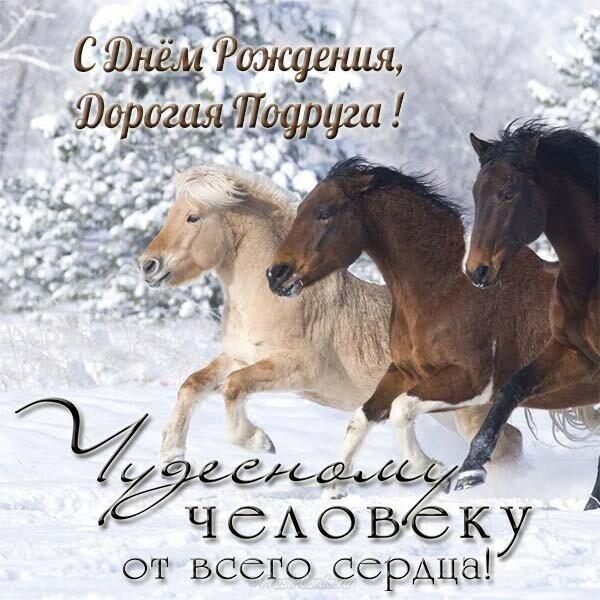 поздравления для конника на день рождения состоит