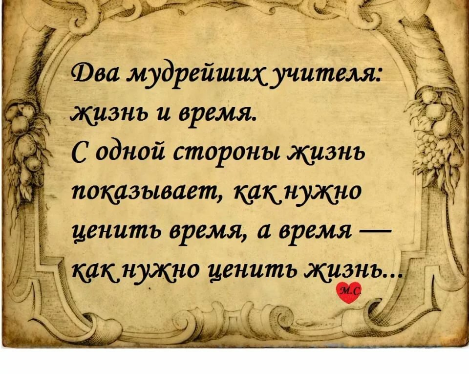 Открытки мудрость жизни