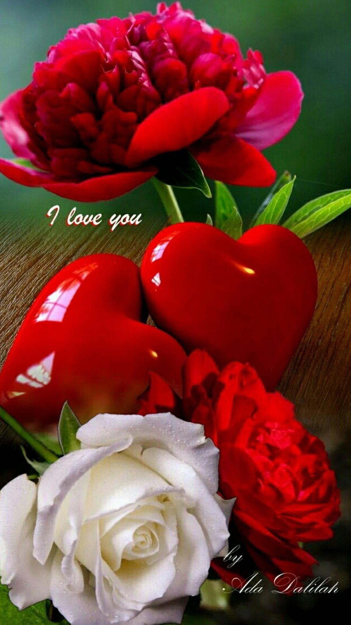 Картинки с розами я люблю тебя