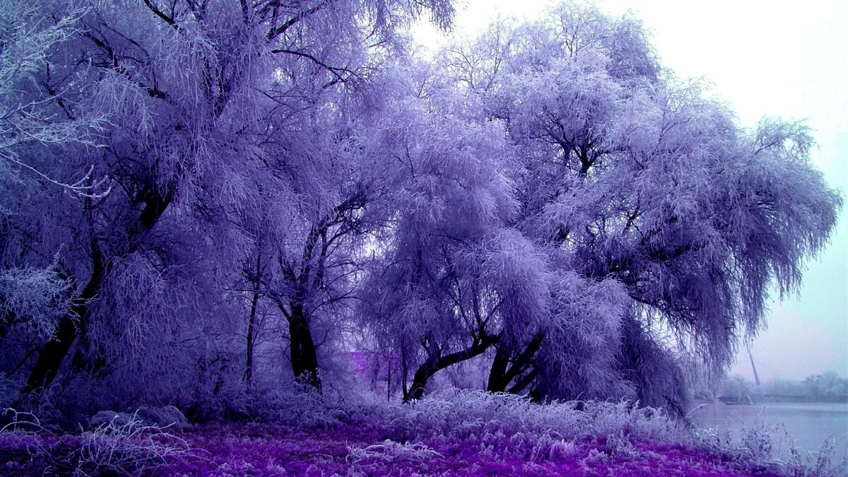 Красивые картинки природы в одном цвете
