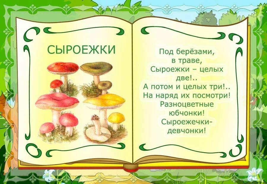 первую о грибах картинки про грибы расчесок, расчески потому