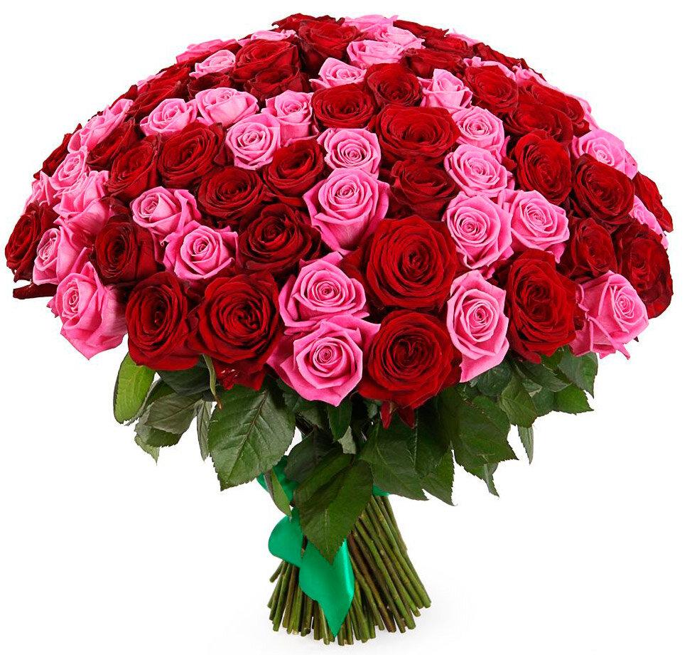 Шикарный букет роз картинки