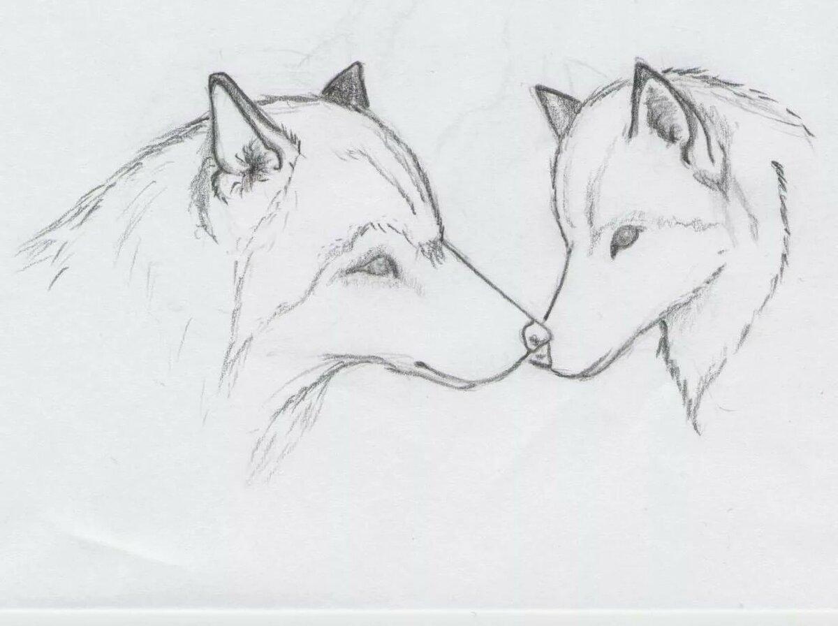 Легкие картинки карандашом про животных