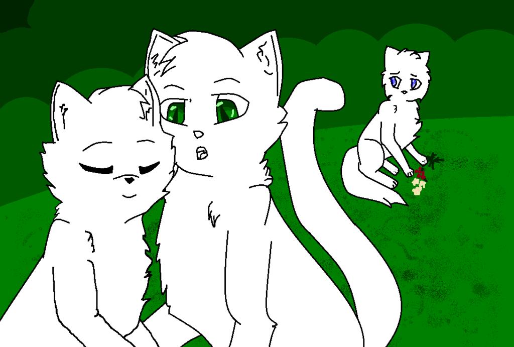 коты воители манекены пары тепло