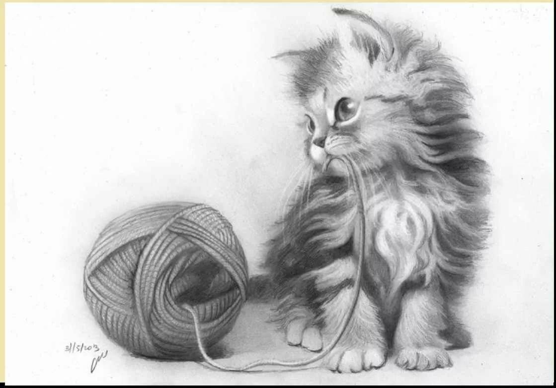 Прикольные картинки с животными карандашом