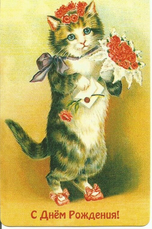 Картинки с кошкой на день рождения, прикольные картинки картинки