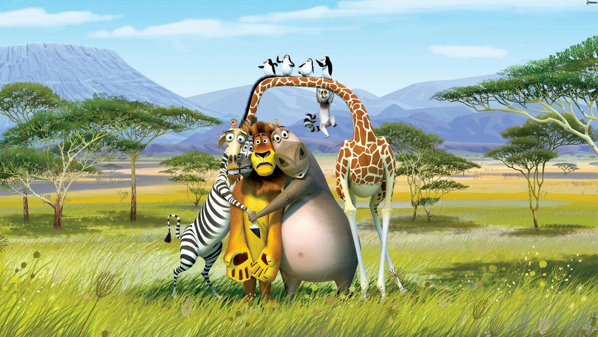 Прикольные картинки в больших форматах, смешные про обезьян