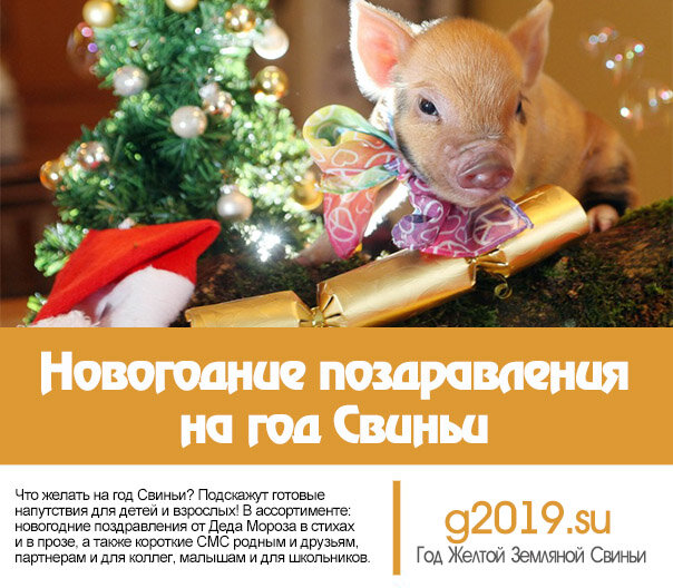 П поздравления с годом свиньи, юбилеем