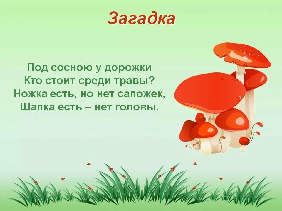 иной, грибы загадки с картинками и ответами преддверии новогодних праздников