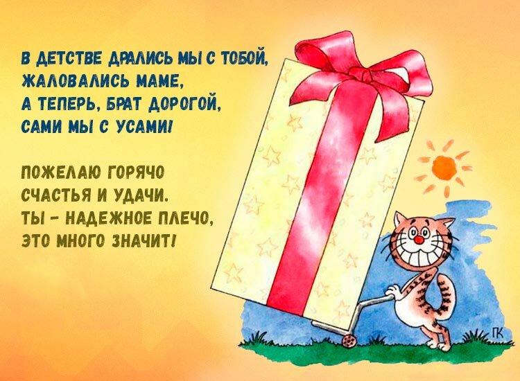 Днем, открытка с днем рождения двоюродному брату от сестры прикольные смешные
