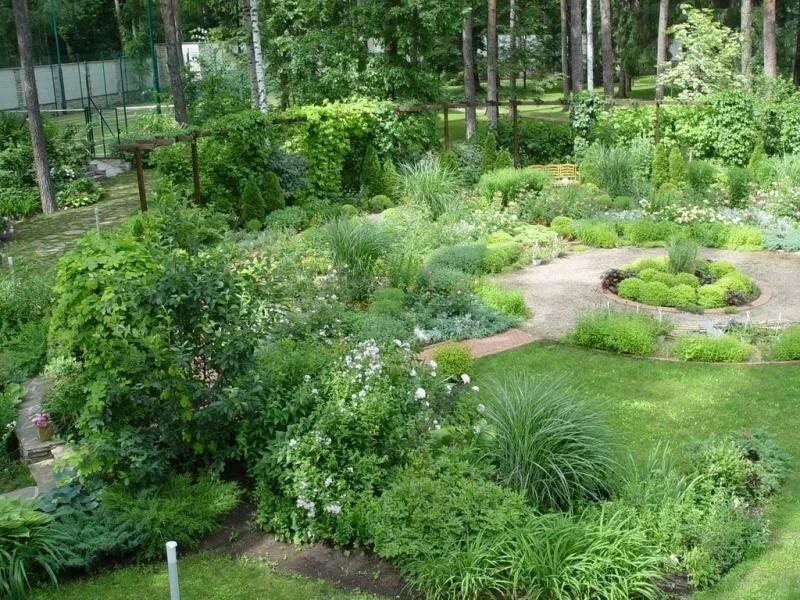 сад елены константиновой фото период