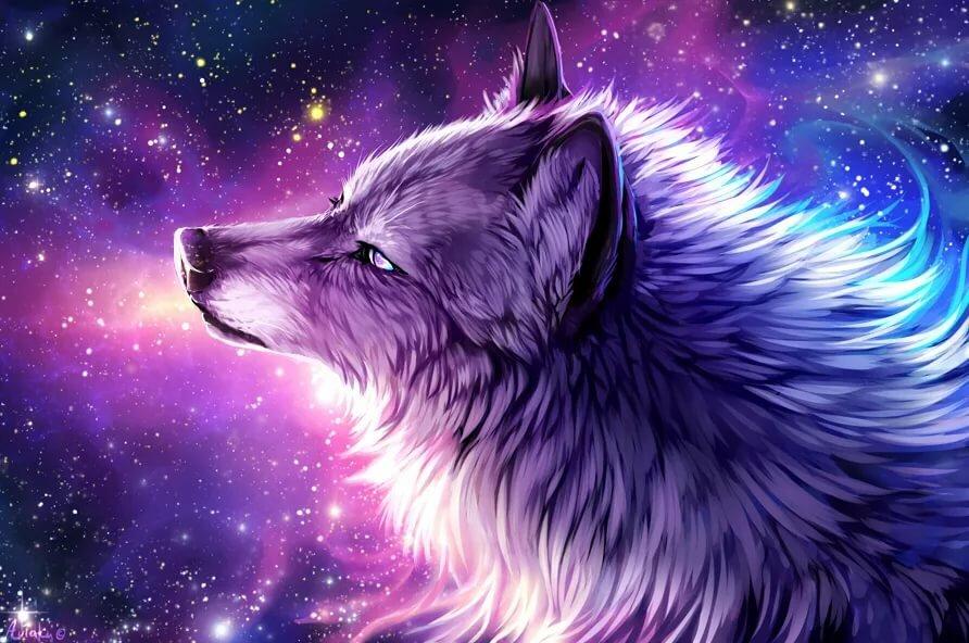 Крутые картинки про волков, прикольная картинка
