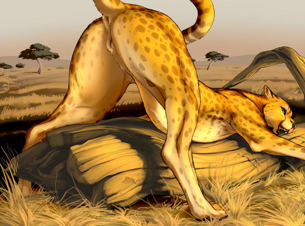 Cheetah girl nudes — photo 7