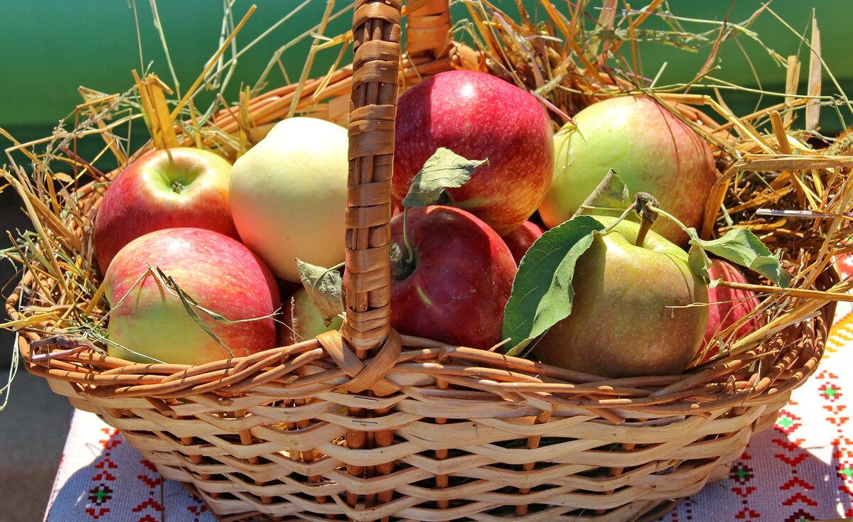 прикольные яблочный спас картинки на рабочий стол порвалась одном месте