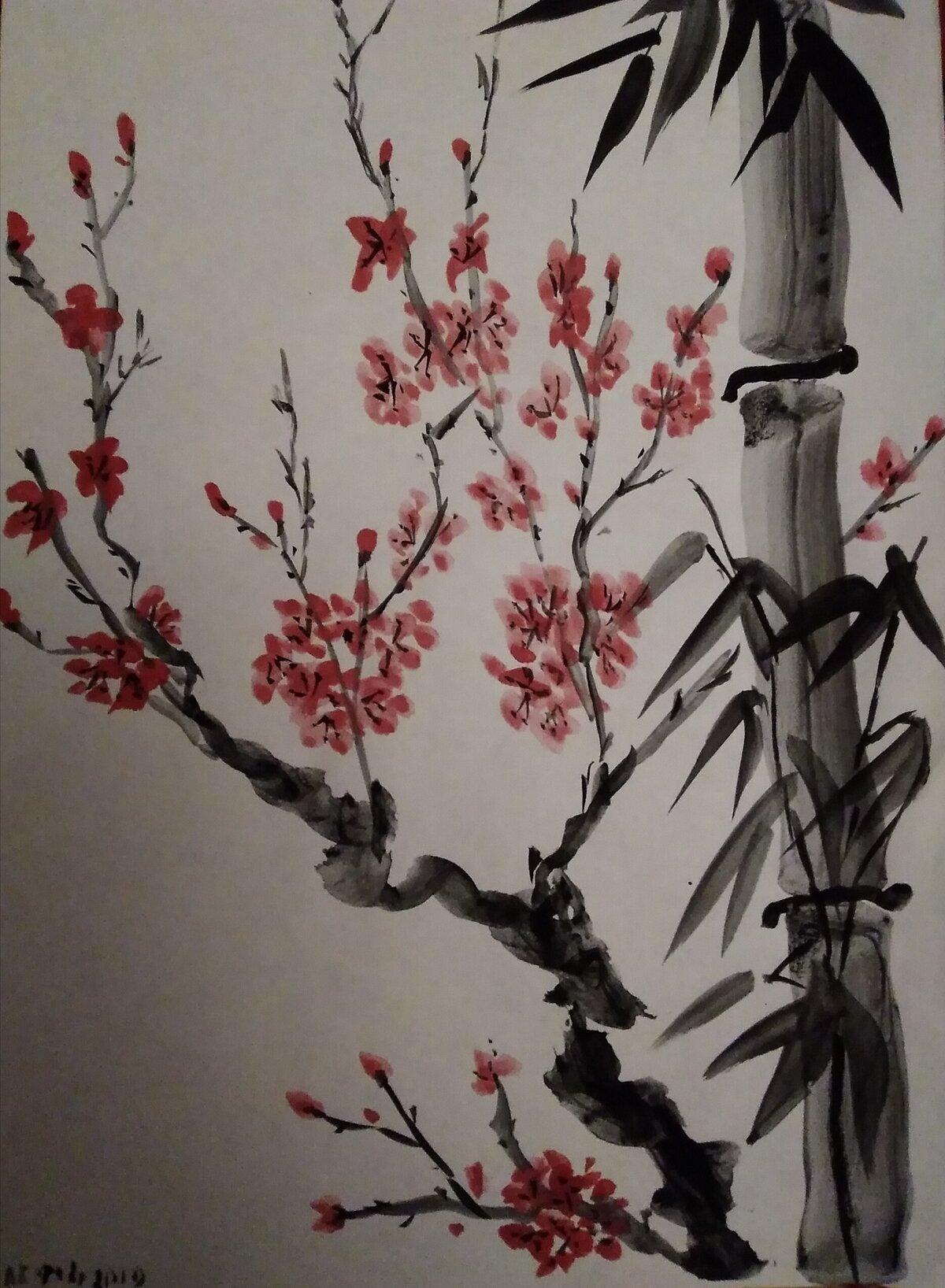 Сакура и бамбук картинки