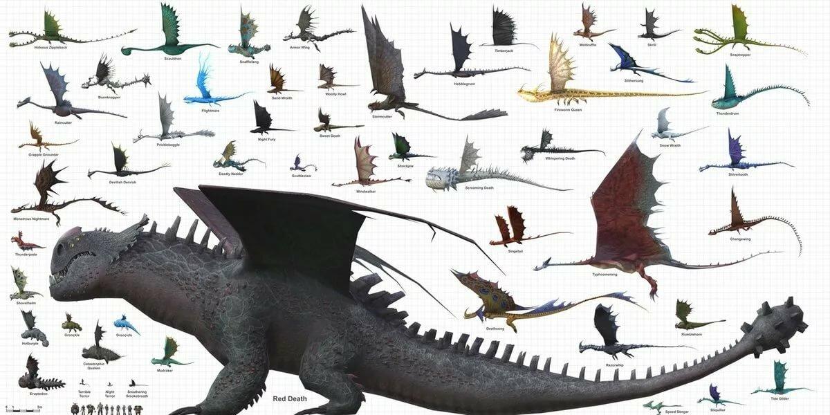 решить, картинки всех драконов из как приручить дракона с названиями каждом микрорайоне решили
