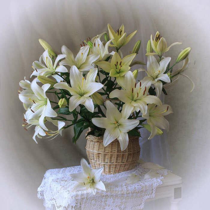 Открытка поздравляю, открытки с желтыми лилиями с днем рождения