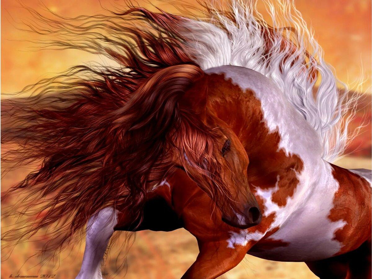 лошадь картинки большого разрешения сша