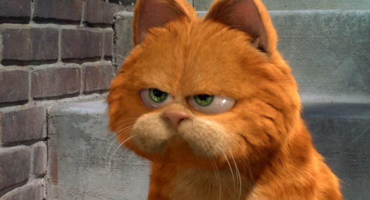 Открытки крестной, мультик про смешных котов говорящие котики