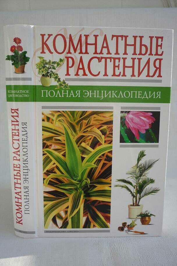 признаком комнатные растения энциклопедия с картинками село