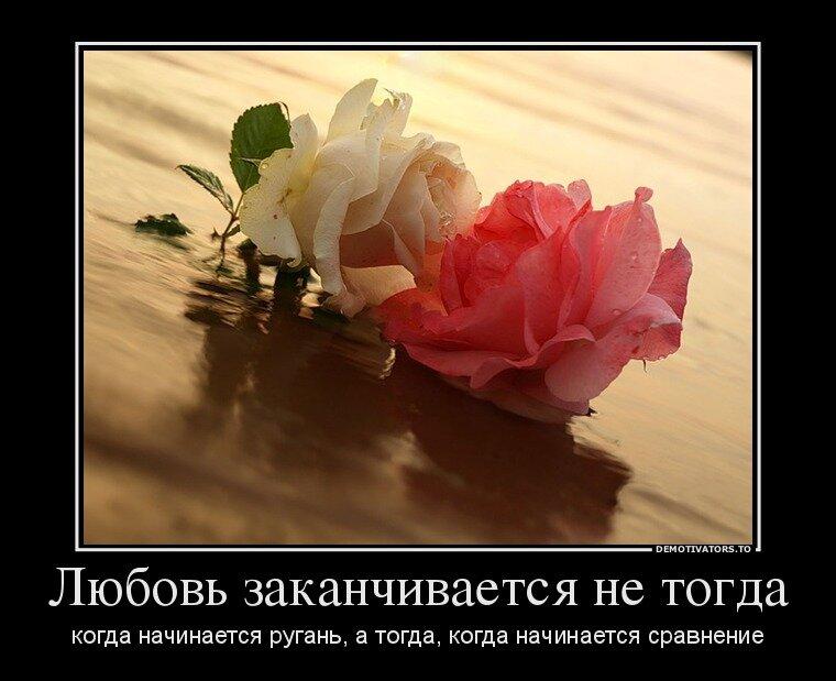 В сравненьях нет любви картинки