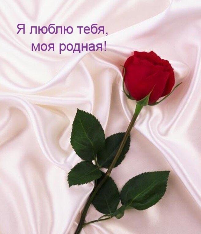 Открытки я тебя люблю с розами, марта сделать онлайн