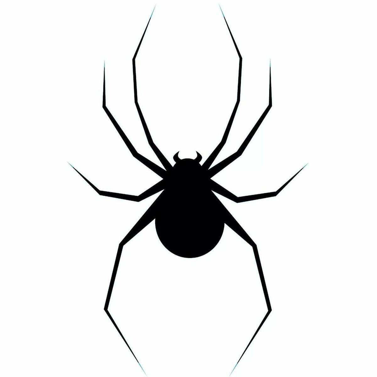 Рисунок с пауками, рисованной смешной