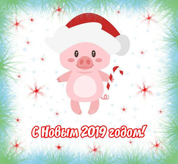Маме картинки, открытки официальные с новым годом 2019 свиньи
