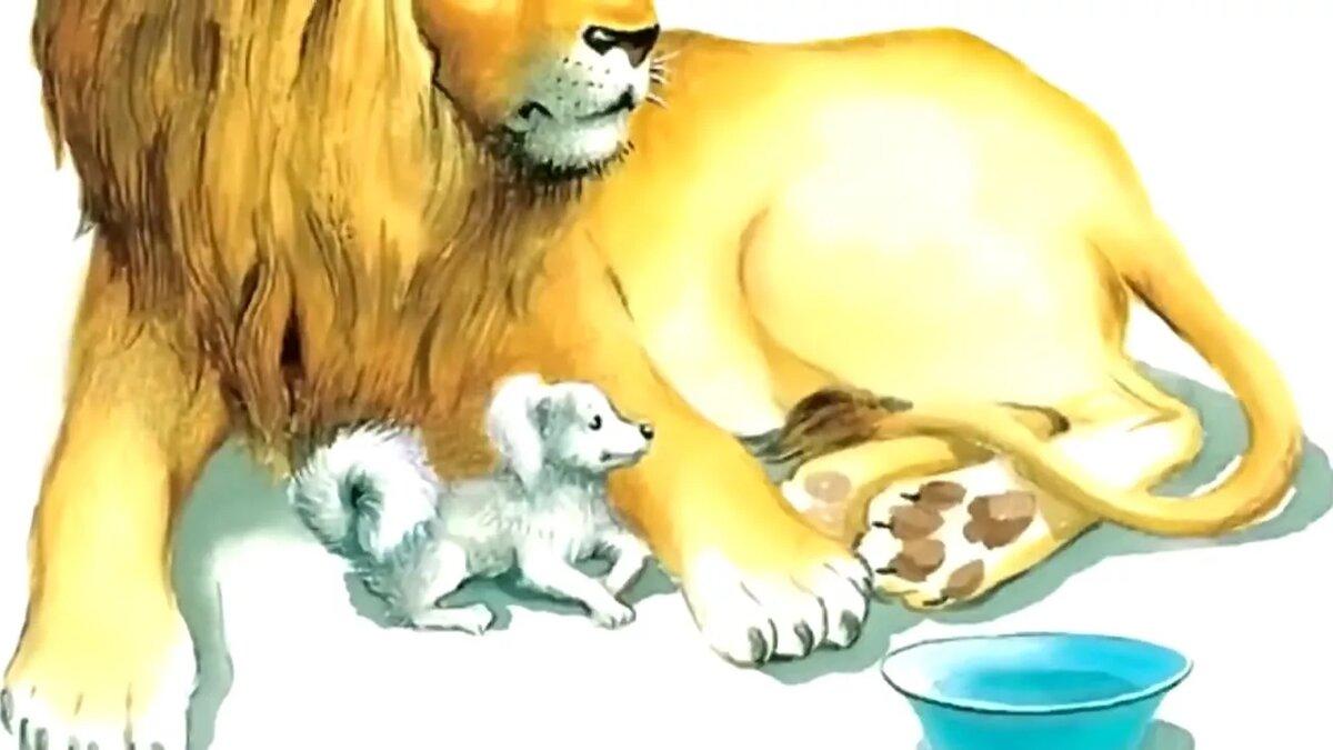 Картинки толстой лев и собачка, анимашки аквариумы открытки