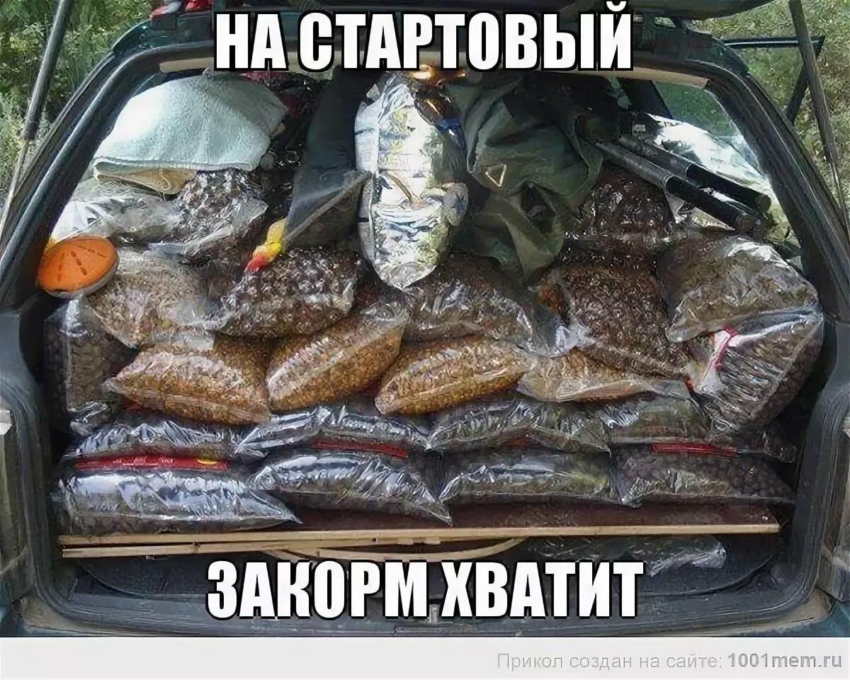 Прикольные картинки про рыбалку с надписью