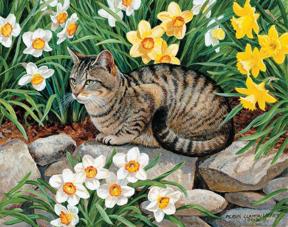 пейзажи с котами картинки данном случае