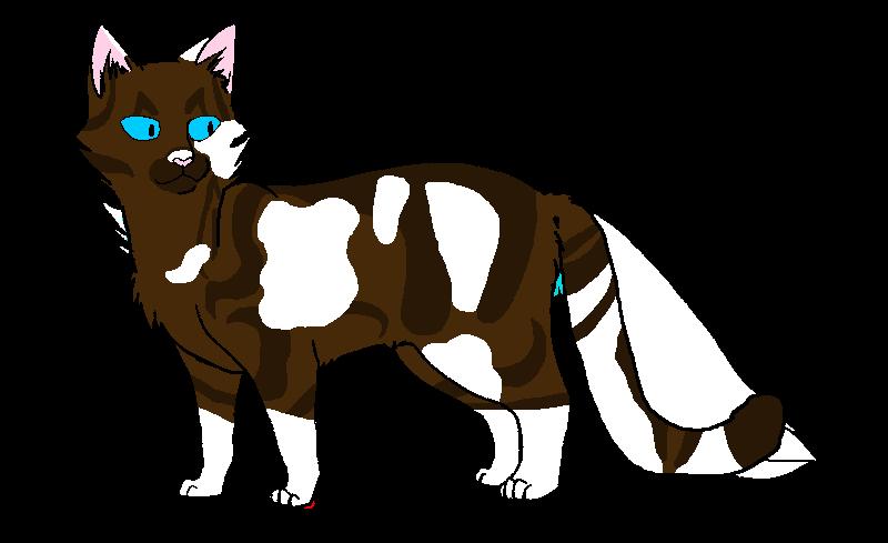 Картинки коты воители розохвостка