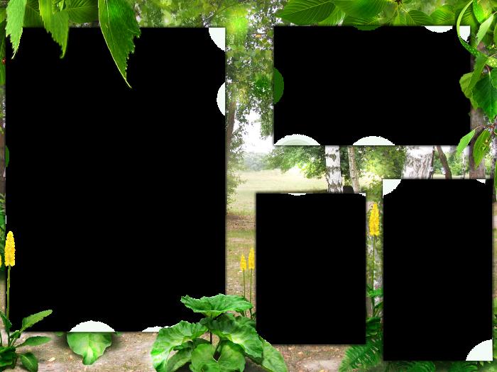 фотошаблон рамочки на траве стать